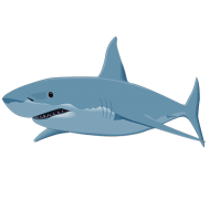 Tiburones. Top