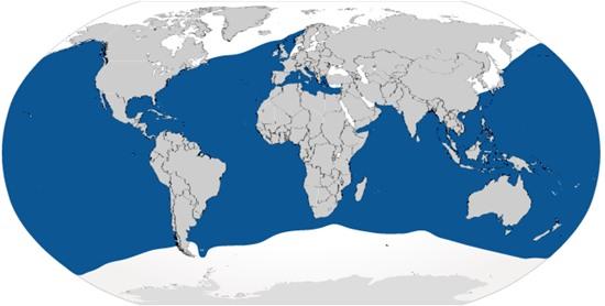 mapa del Habitat del Tiburon azul.jpg